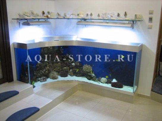 Профессиональное изготовление аквариумов