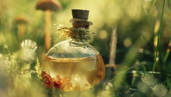 Полезные свойства масла чайного дерева и его медицинское использование