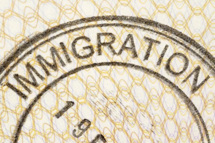 Сучасні питання міграційного законодавства України