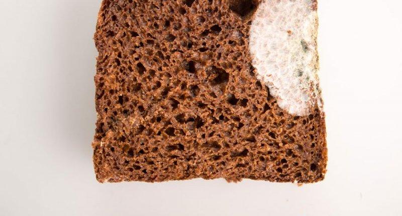 Медики напугали плесенью на хлебе