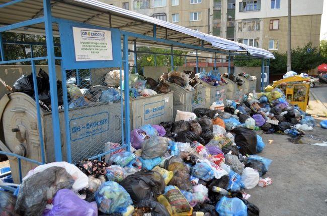 Китайцы собрались делать из львовского мусора электричество