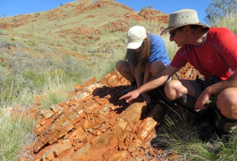 Найдены древнейшие следы жизни на Земле