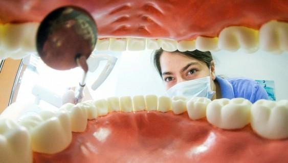 Почему нельзя выбрасывать выпавшие молочные зубы