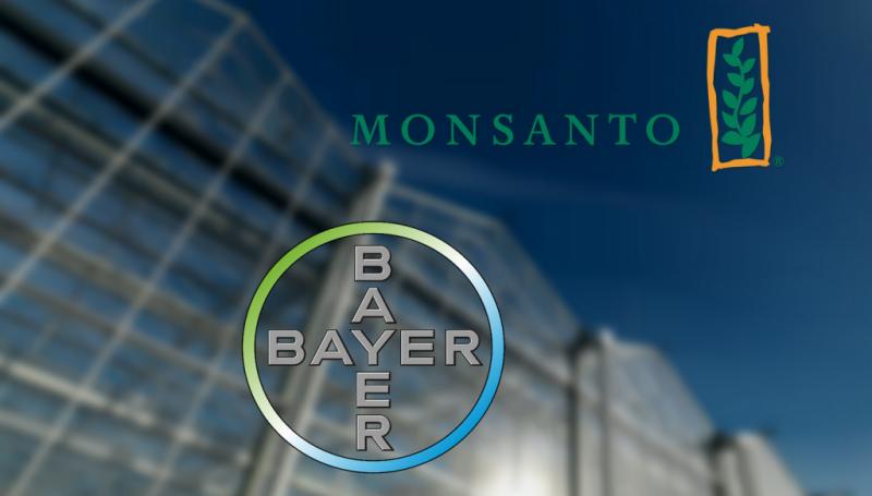 Взлет глобальных аграрных баронов