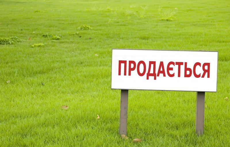 Законопроекты по земельной реформе готовы на 90%, — Гройсман