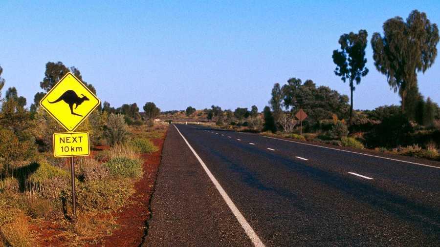 В Австралии предложили укреплять асфальт с помощью окурков