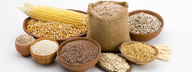 ЕС впервые ввел пошлины на импорт кукурузы, ржи и сорго