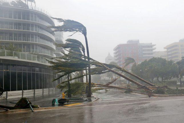 Число жертв урагана «Ирма» увеличилось до 46