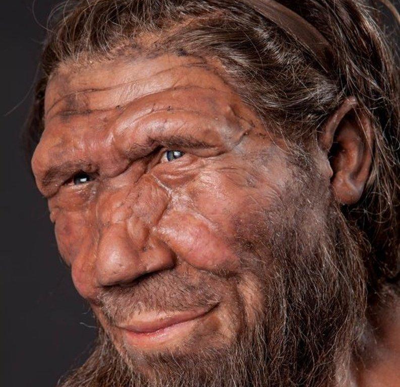 Генетики: не все неандертальцы были голубоглазыми блондинами