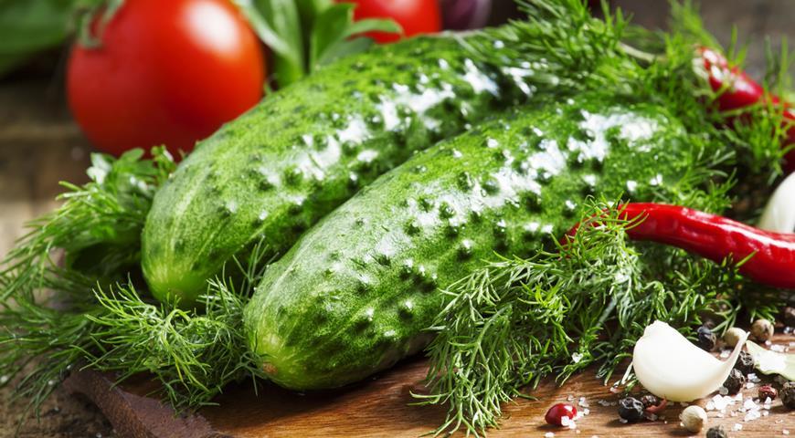 В Украине рекордно подорожали огурцы и помидоры