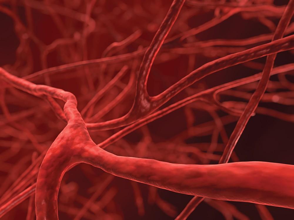 Ученые связали шизофрению с нарушениями работы кровеносной системы