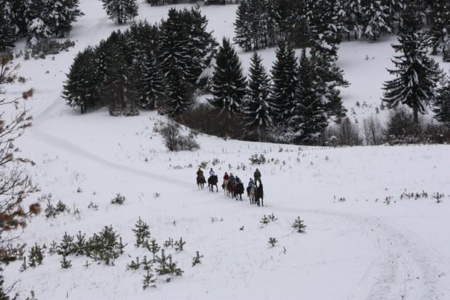 В Карпатах снег, температура воздуха значительно снизилась