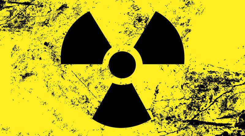 Во Франции нашли радиоактивный цезий во ввезенных из России грибах