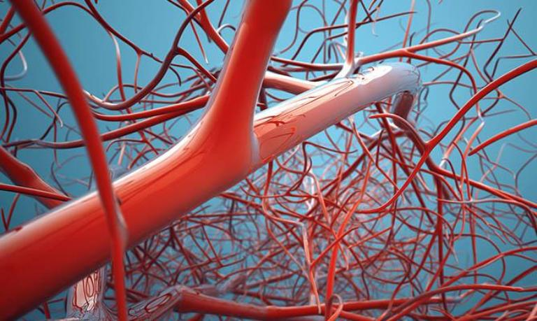 Ученые совершили прорыв в лечении гемофилии