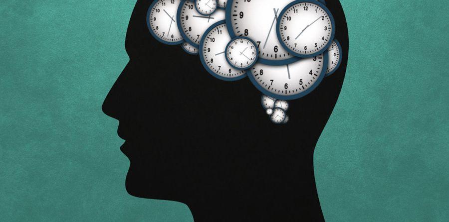 Нейробиологи выяснили, как мозг следит за временем