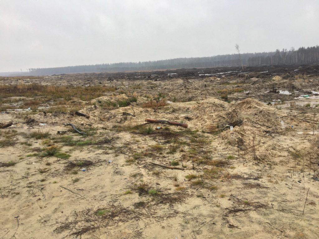 Как МВД крышует нелегальную добычу янтаря под Олевском