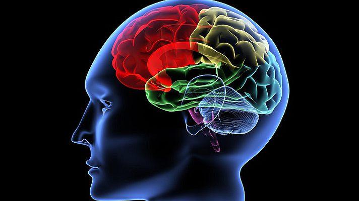 Когнитивные тренировки оказались полезными для мозга пожилых людей