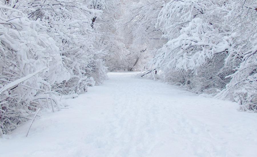 Синоптики прогнозируют очень сильные снегопады и метели
