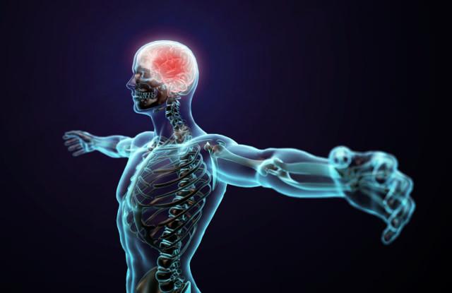 Ученые рассказали о связи между ростом человека и вероятностью инсульта