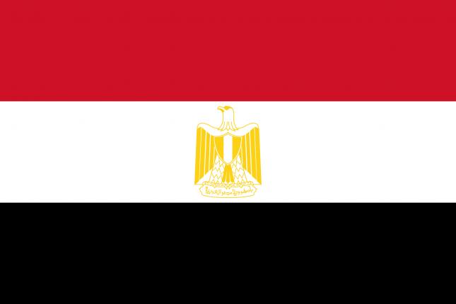 Полиция Египта поймала убийцу украинки, — СМИ
