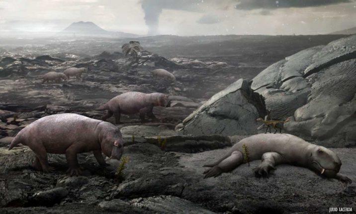 Масштабы великого вымирания 250 млн лет назад ученые связали с озоновым слоем