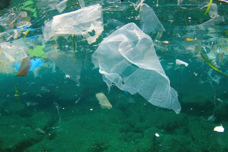 Большое тихоокеанское мусорное пятно в 3 раза превысило территорию Франции
