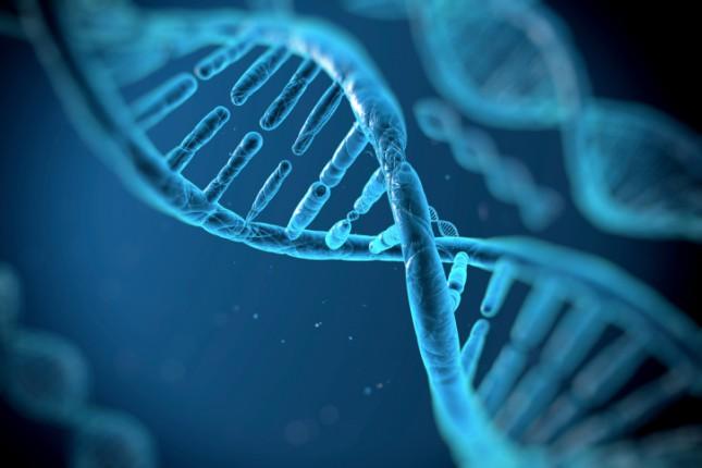 В клетках человека обнаружили новую форму ДНК