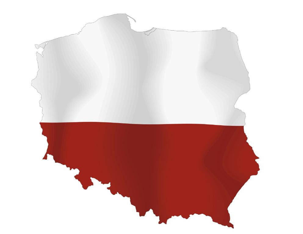 Как в Польше готовятся к парламентским выборам