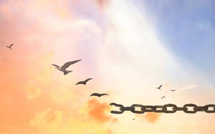 Общество парадоксальной свободы в Украине