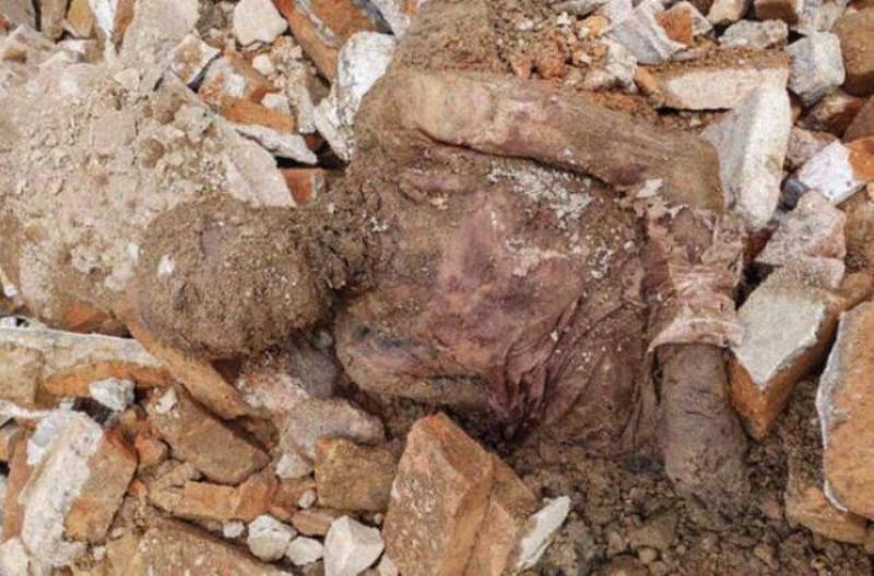 В Иране обнаружили предполагаемую мумию шаха