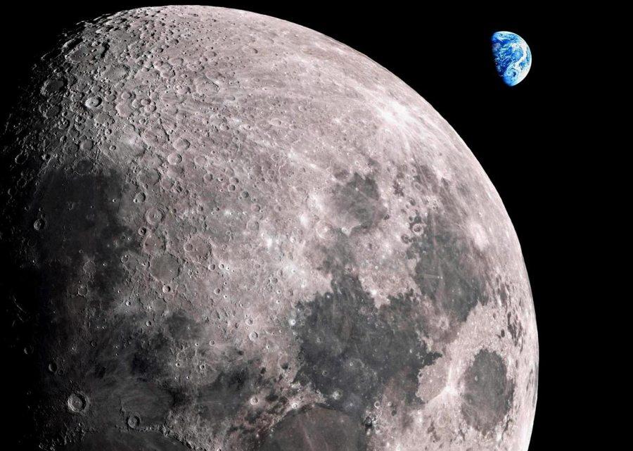 Лунный грунт может быть опасен для клеток млекопитающих