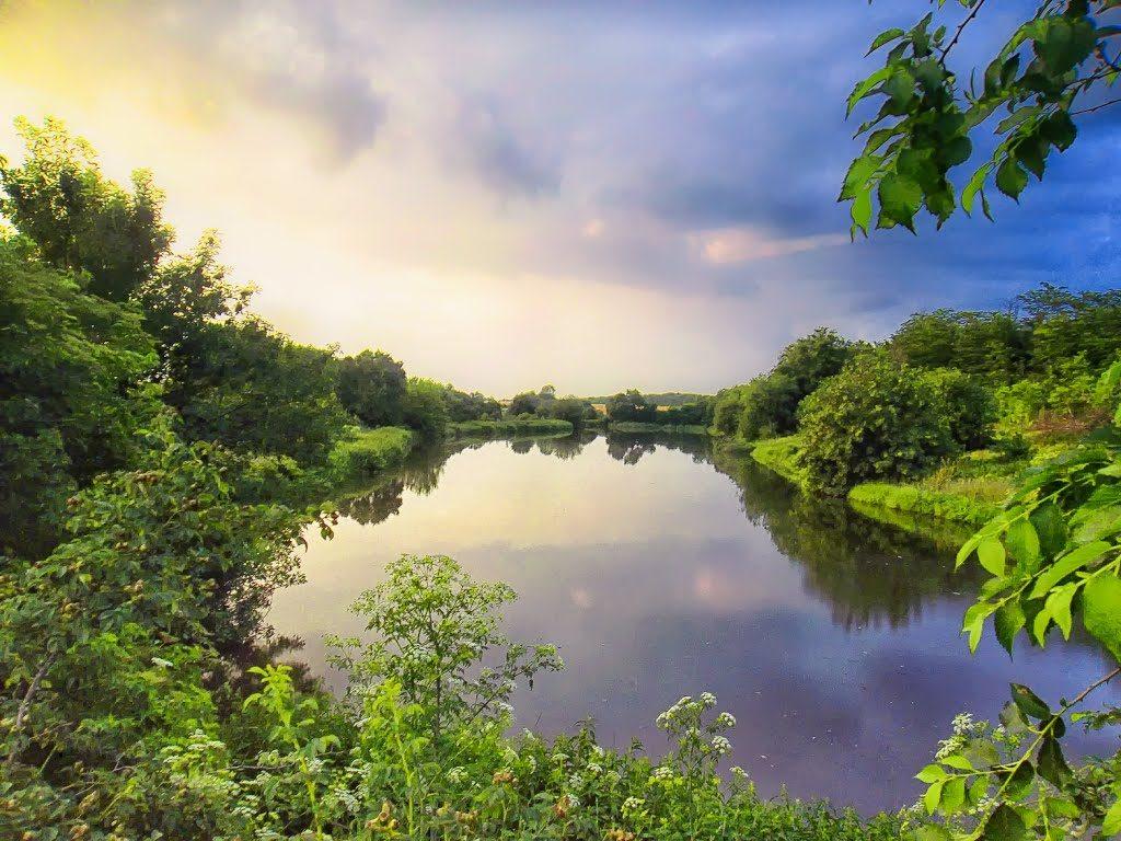 Глобальное потепление уничтожает реки в Украине, — эксперт