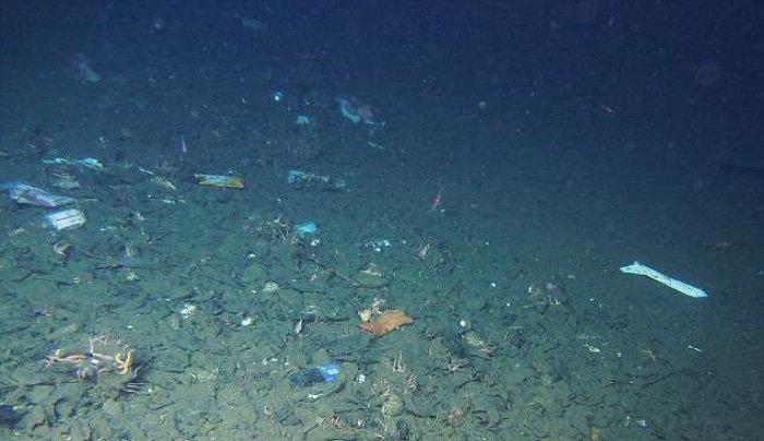 Ученые рассказали про пластиковый мусор в Марианской впадине