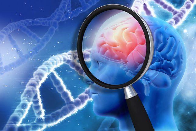 Ученые приблизились к созданию таблеток для улучшения памяти и борьбы с Альцгеймером
