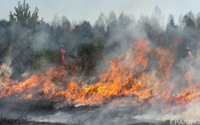 На месте возгорания леса в зоне ЧАЭС найдены факелы, — ГСЧС