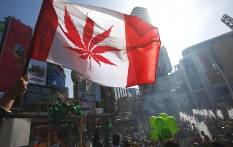 Легализация марихуаны в Канаде: как превратить проблему в возможность