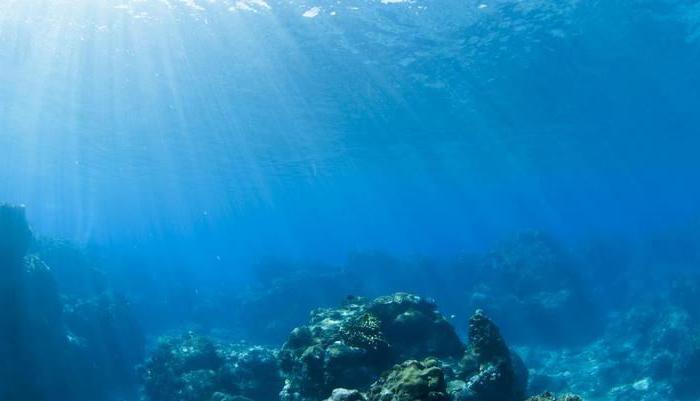 Выбросы CO2 разрушают океаническое дно