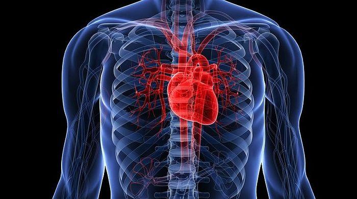 Названы основные причины сердечного приступа