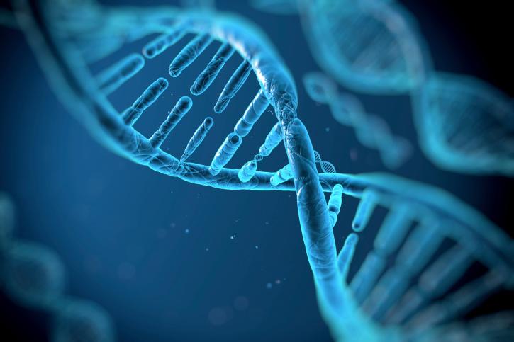 Ученые выяснили, как сильно гены влияют на долголетие людей