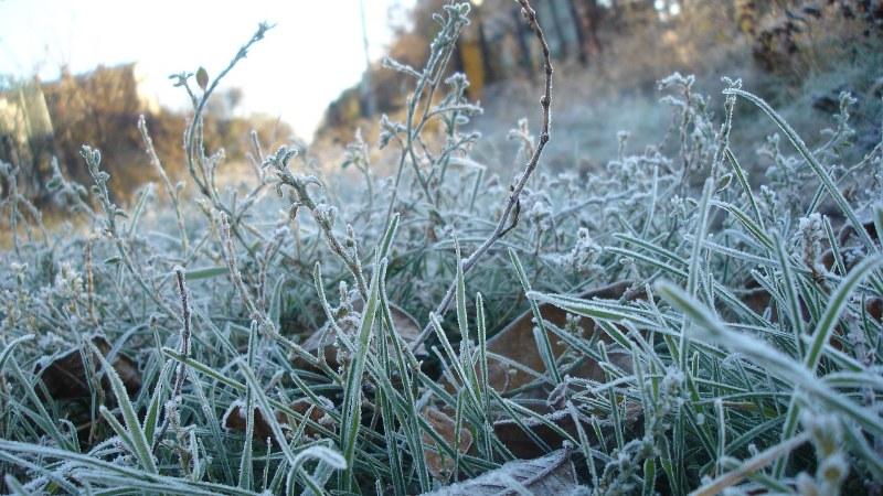 Синоптики на понедельник обещают до 6° мороза