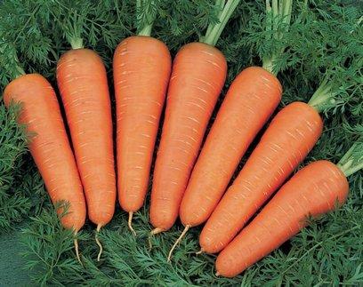 Эксперты назвали овощ, который снизит риск развития рака