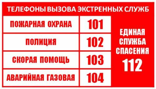 В Украине введут единый телефон экстренных служб: подробности