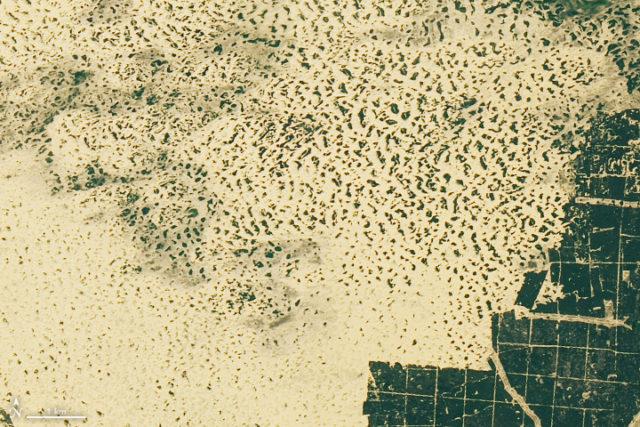 NASA показало, как выглядит украинская пустыня из космоса: фото