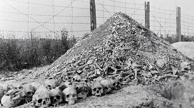 Израиль ответил на просьбу Зеленского выступить на форуме по Холокосту