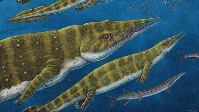 Ученые нашли существо, жившее до динозавров