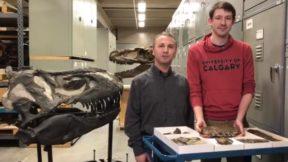 Ученые обнаружили скелет трехметрового «жнеца смерти»