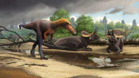 Новый вид динозавров обнаружили в Канаде