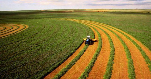 Правительство Шмыгаля имеет свои планы на рынок земли