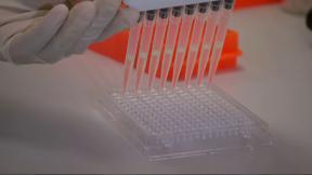 Ученые выяснили, какая группа крови наиболее подвержена коронавирусу