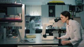 Ученые выяснили, как возник коронавирус